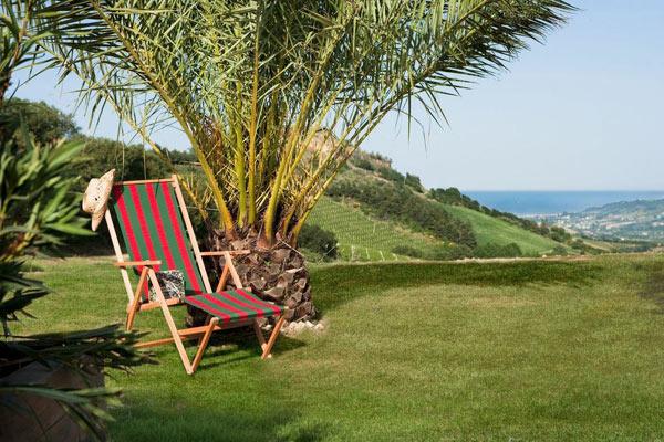 Palm-tree-sea