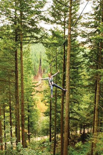 Go Ape tree tops adventure