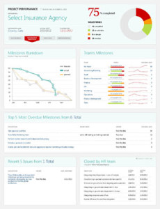 Project Performance Dashboard