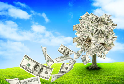 Money-Tree-Image