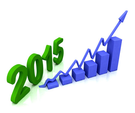 2015 blue bar chart shows