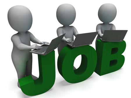 job online shows