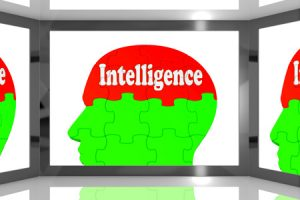 DYN EVOLVES INTERNET PERFORMANCE SPACE WITH LAUNCH OF INTERNET INTELLIGENCE