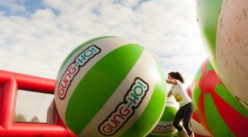 Case study: Gung-Ho at Royal Windsor Racecourse