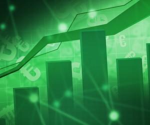 investment company, National Bonds,Ramesh MV, Executive Director Risk ,Risk Manager leverages,National Bonds