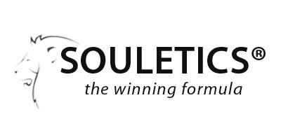 soultics