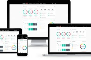 NEW AFFORDABLE ONLINE ACCOUNTING SOFTWARE DELIVERS TIMELY HELPING HAND FOR BUSINESSES FACING COMPULSORY DIGITAL RECORD KEEPING