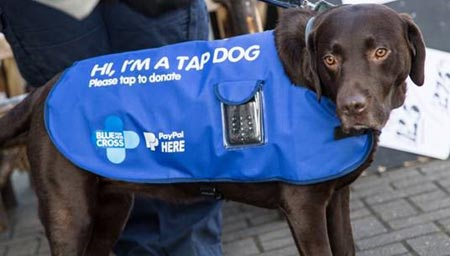 TEAM OF FUNDRAISING 'TAP DOGS' GOES NATIONWIDE