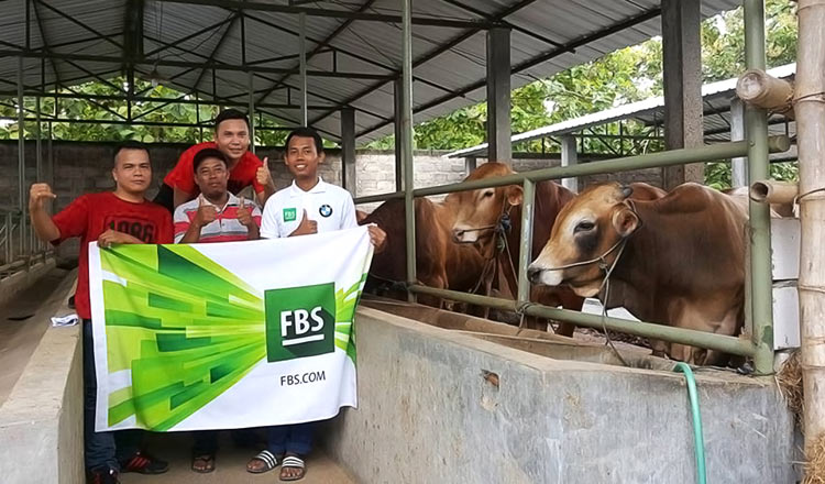 Rosid from Indonesia wished to provide his family with a live cow