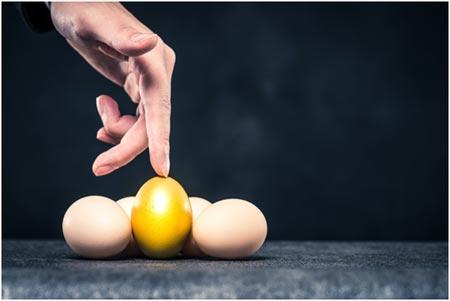 UNDERSTANDING YOUR RISK PROFILE -2