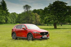 What Car? crowns Mazda CX-5 the pawfect car for dogs during Pet Appreciation Week