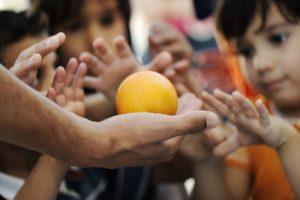 Building a Nonprofit Corporation The Novice's Guide