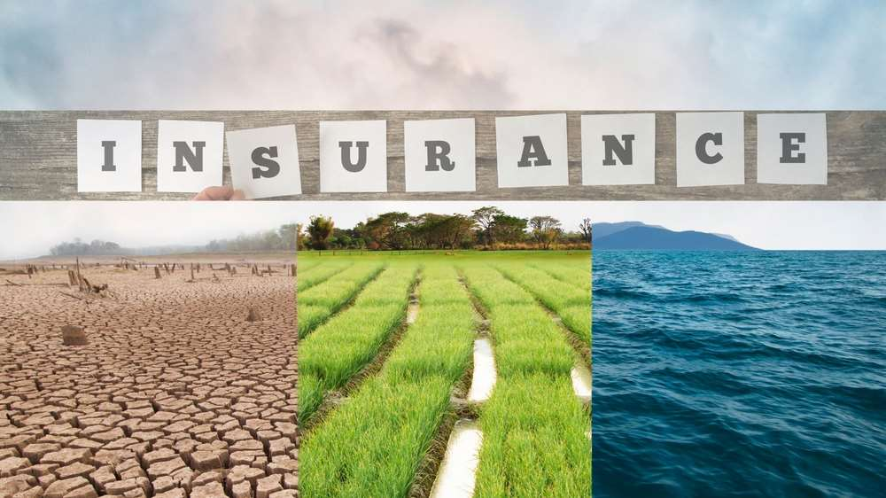 How climate change is impacting the insurance industry