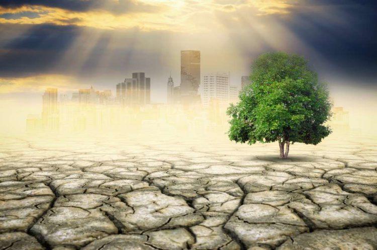 Feeling the heat: Banks eye climate change risk