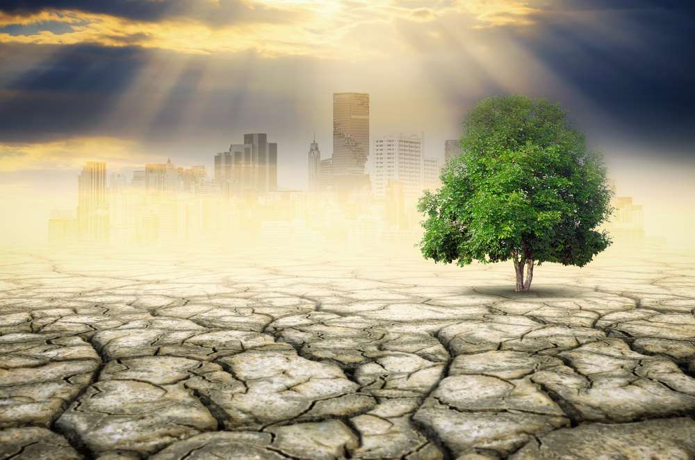 Feeling the heat: Banks eye climate change risk