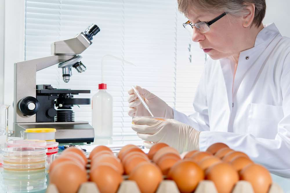 Catering for the coronavirus: Food health &safety firm offers advice on working to re-open