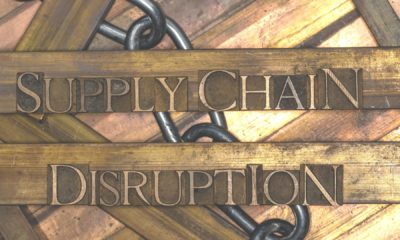 How have British businesses responded to supply chain disruption? 16