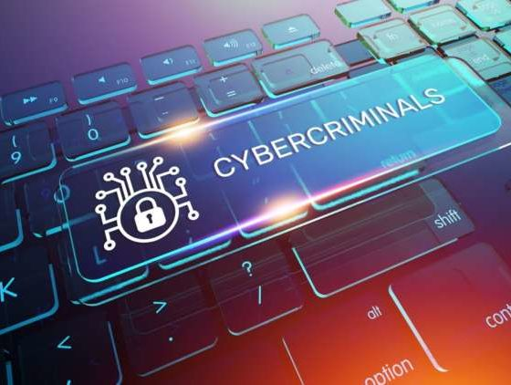 Why cybercriminals have 'Gone Vishing' during the COVID-19 Pandemic 2