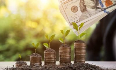 The Future of Green Finance 11