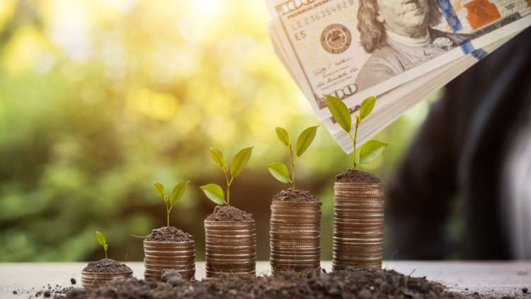 The Future of Green Finance 12