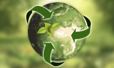 Transparency offers the pathway to a more sustainable Earth