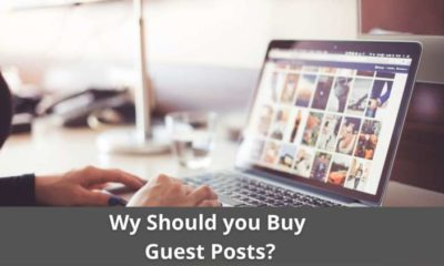 Why should you Buy Guest Posts? 11