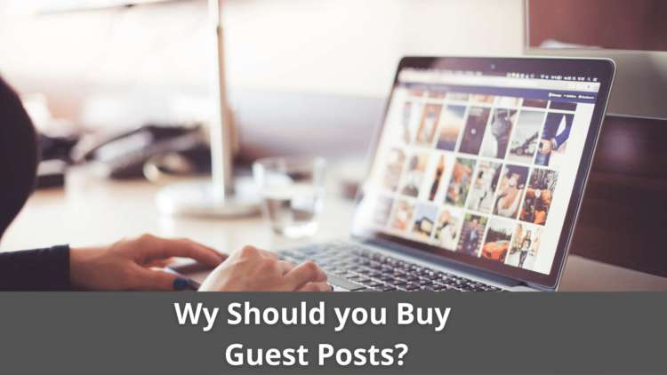 Why should you Buy Guest Posts? 12
