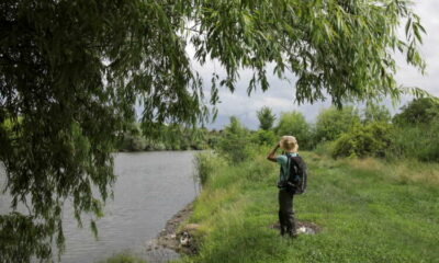 Conservationists race to protect rich wildlife on edge of Bucharest 17
