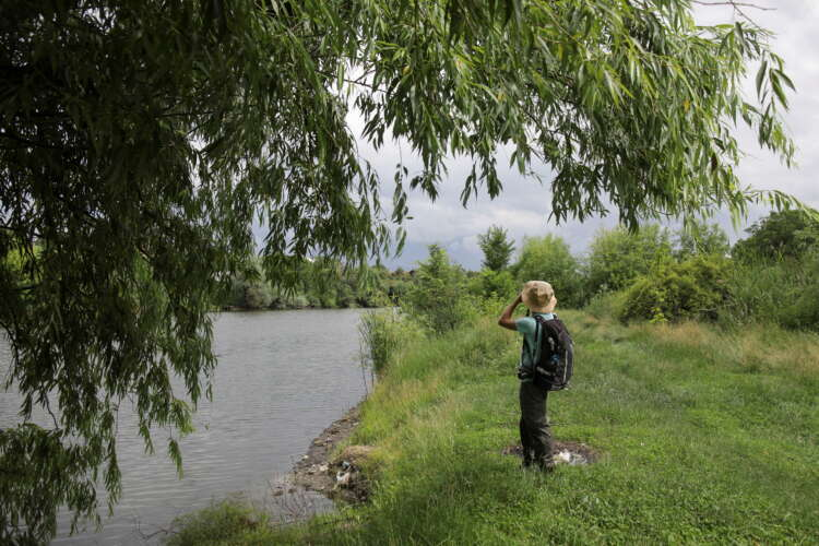 Conservationists race to protect rich wildlife on edge of Bucharest 1