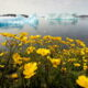World Bank commits to annual reports on climate action plan 6
