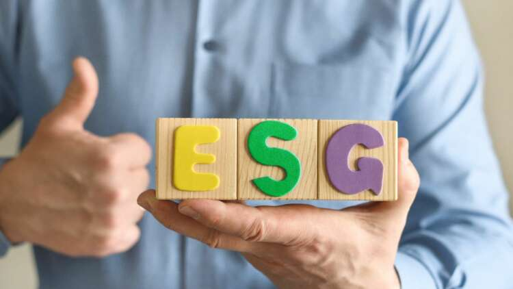 Businesses should not wait for regulators to spell out ESG standards