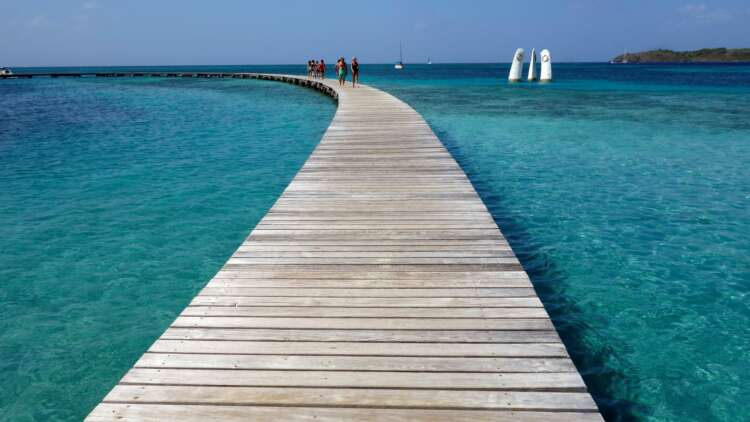 Trees or tourists? Jamaica's COVID recovery push threatens green aims