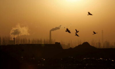 Explainer: How will China's new national carbon emissions trading scheme (ETS) work? 21