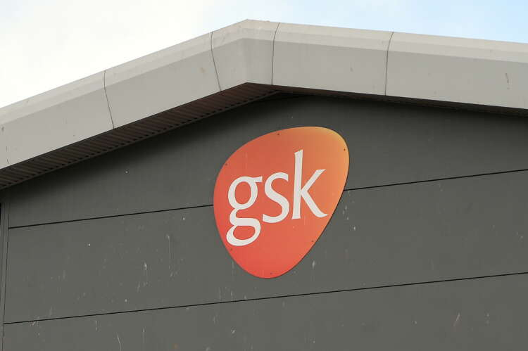 Activist investor Bluebell takes stake in GSK 1